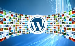 WordPress initiation